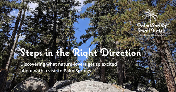 Steps in the Right Direction story