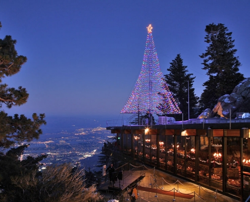 Palm Springs Tram Christmas Tree