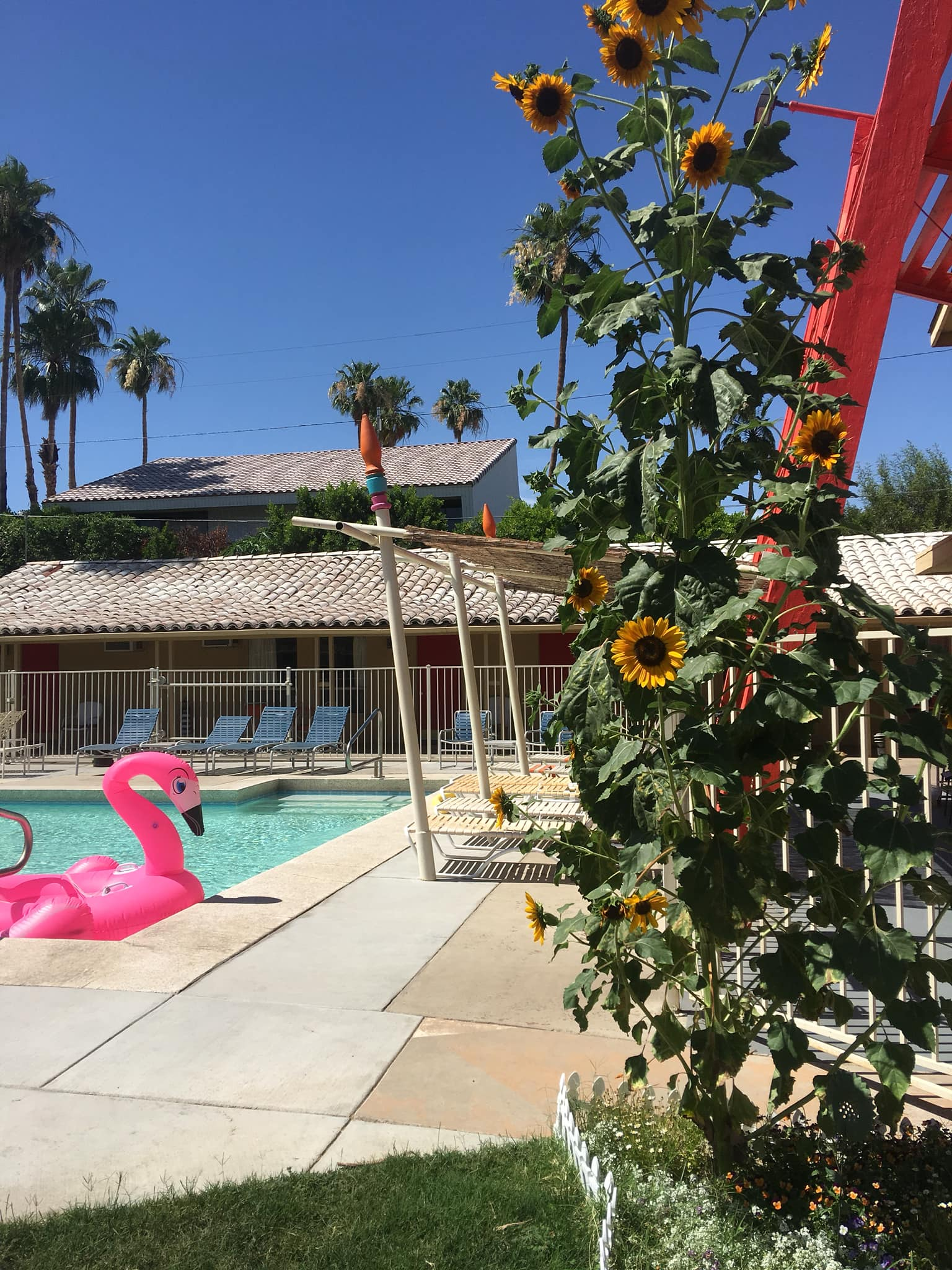 The Aloha Hotel is a woman-owned property in the Tahquitz River Estates