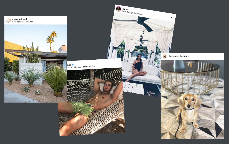 L'Horizon Instagram Posts